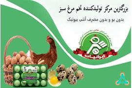 اعطای نمایندگی تخم مرغ، تخم کپک و تخم بلدرچین سبز ایرانیان با مزایای عالی