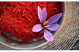 جذب عاملیت فروش زعفران ممتاز زادبوم در سراسر کشور با شرایط عالی