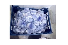 پذیرش نمایندگی در شهرستان ها برای فروش نمک دریایی و انواع سنگ های معدنی