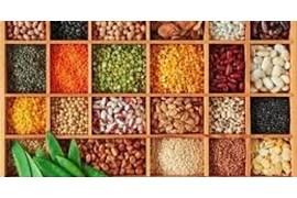 اعطای نمایندگی انحصاری مواد غذایی، حبوبات و ادویجات بسته بندی شده در سراسر کشور با شرایط عالی