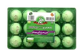 """اعطای نمایندگی انحصاری تخم مرغ  """"سبز ایرانیان"""" در سراسر ایران"""