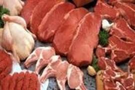 جذب نماینده فروش محصولات پروتئینی گوش و مرغ ساراکمپانی