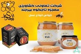 اعطای نمایندگی فروش محصولات غذایی تاجکوه بیرجند ، تولیدکننده مستقیم