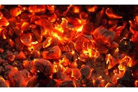 اعطای نمایندگی انحصاری زغال کافهچی