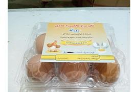 جذب نماینده فروش تخم مرغ محلی بسته بندی