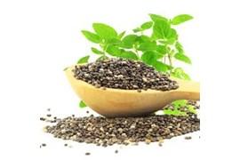 اعطای نمایندگی در زمینه مواد غذایی ، مزرعه سبز
