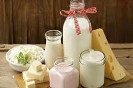 نمایندگی فروش محصولات لبنی بیساکو برند رز طلائی  (دوغ ,شیر,ماست)