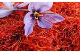 اعطای نمایندگی پخش محصولات زعفران مصطفوی
