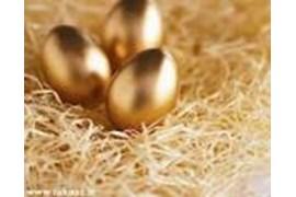 جذب عامل فروش تخم مرغ