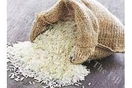 جذب عاملیت فروش برنج ایرانی شالیکوبی دولت آبادی در سراسر کشور
