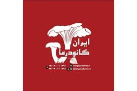 اعطای نمایندگی گیاهان دارویی ایران گانودرما