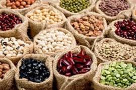 اعطای نمایندگی فروش حبوبات و محصولات کشاورزی