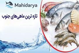اعطای نمایندگی فروش محصولات دریایی، ماهی در سراسر کشور با شرایط عالی