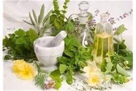 اعطای نمایندگی فروش داروهای گیاهی فن آوران کشت سبز