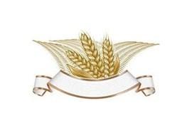 اعطای نمایندگی فروش برنج کشاورز