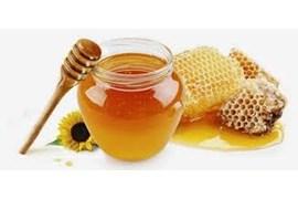 اعطای نمایندگی فروش عسل هفت گل