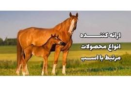 فروش عمده و جذب نماینده فروش کالای مصرفی حیوانات خانگی و اسب (وارداتی از لهستان) پیچه زیست فناور