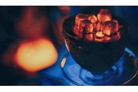 اعطای نمایندگی زغال بامبو