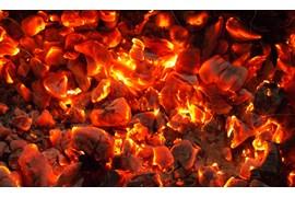 جذب بازاریاب جهت پخش زغال بسته بندی