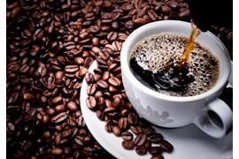 کارشناس فروش و بازاریاب قهوه