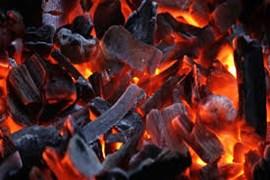 جذب بازاریاب زغال فشرده و سنتی آلیشان