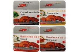جذب بازاریاب و عمده فروش قارچ دارویی گانودرما