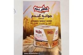 جذب بازاریاب فعال محصولات غذایی شکرریزپارس