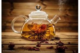 استخدام بازاریاب چای و دمنوش های گیاهی در سراسر کشور، مقدم