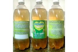 پذیرش بازاریاب از کل کشور قارچ و نوشیدنی پروبیوتیک و ارگانیک کامبوجا(کامبوچا)