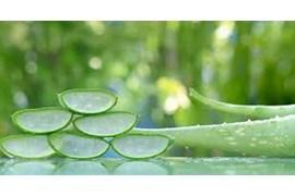 جذب بازاریاب (خانم) فروش مویرگی گیاهان دارویی پویش