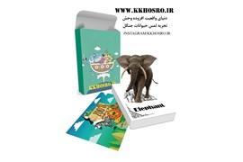 فلش کارتهای باغ وحش 4 بعدی واقعیت افزوده