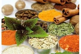 استخدام بازاریاب فروش و پخش انواع مکمل ها و میکس های گیاهی، بایوتات