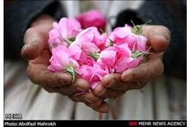 تولیدی گلاب و عرقیات گیاهی فرزانه
