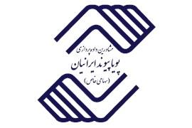 مشاورین داده پردازی پویا پیوند ایرانیان