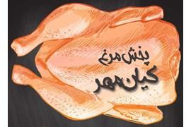 پخش کیان مهر