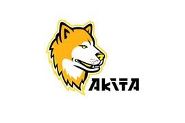 ردیاب آکیتا