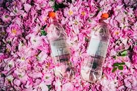 گلاب و عرقیات گیاهی کاشان