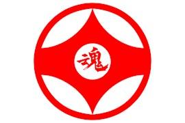 سازمان جهانی هون کیوکوشین کاراته